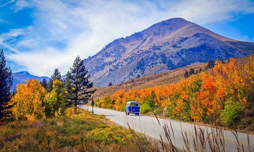 Bishop bursting with fall colors -- a peek of them at their peak