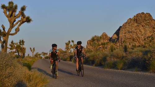 Bicycle and hike on this tour of Joshua Tree and Palm Springs