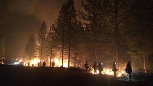 Sen. Dianne Feinstein's disappointing stance on logging and wildfires - Los Angeles Times