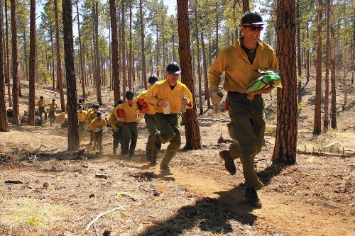 NASA and the U.S. Forest Service team up to design better fire shelters