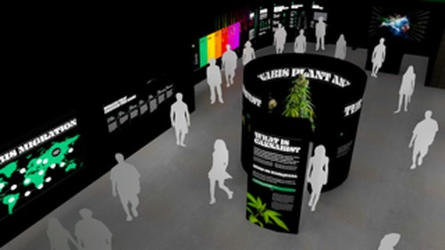 Museum of Weed pop-up coming to Hollywood