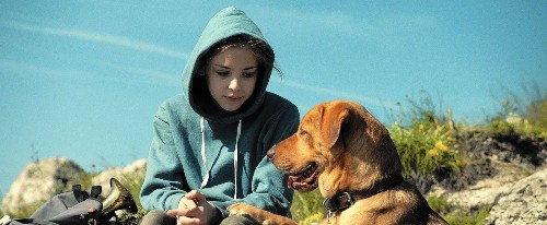 Home entertainment: A dog has its day in the intense 'White God' - Los Angeles Times