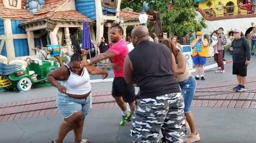 'Hitting a woman is not right': Disney visitor tries to break up family brawl