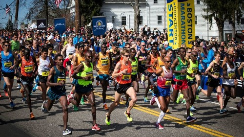 Marathon runners get a boost from the bacteria in their guts