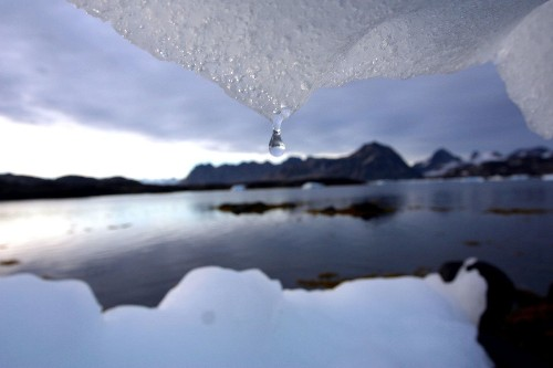 Thirsty continents are slowing down expected sea level rise, scientists say