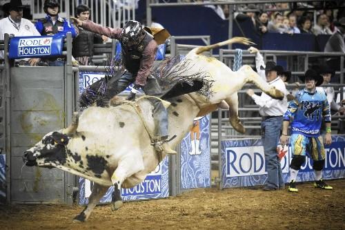 Battered bull rider struggles for eight seconds of fame - Los Angeles Times