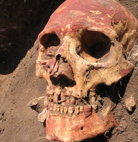 Ancient DNA sheds light on how language, cultures evolved in Bronze Age Europe