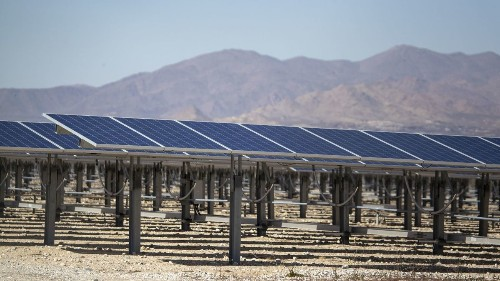 How a bird started a fire at a California solar farm
