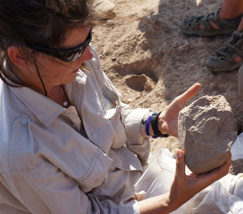 Scientists unearth earliest-known stone tools, 3.3 million years old
