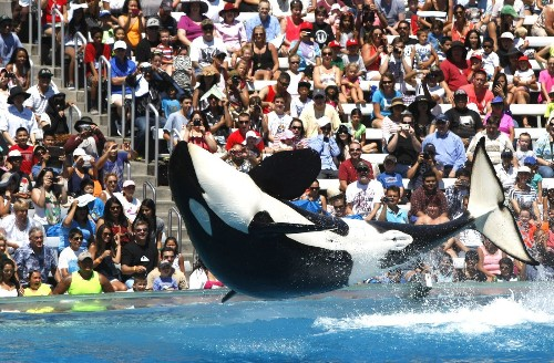 False advertising lawsuits against SeaWorld dismissed - Los Angeles Times