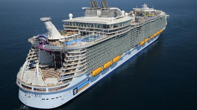 Boy, 16, falls to his death while trying to climb into room from balcony of Royal Caribbean ship - Los Angeles Times