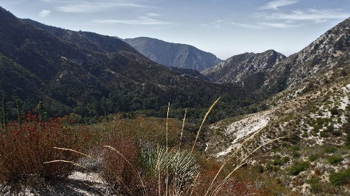 Fire danger level elevated in Angeles National Forest - Los Angeles Times