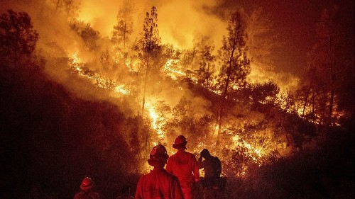 Climate change is going to make wildfires worse. Cutting trees and controlled burns can help