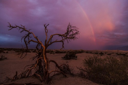 National park photo ops: Cross your fingers and hope for a stormy sunrise at Death Valley