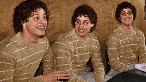 'Three Identical Strangers' is a riveting account of identical triplets separated at birth