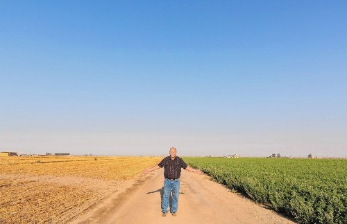 California dairy farmers struggling to survive prolonged drought - Los Angeles Times