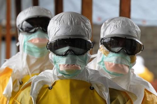 Changes urged at World Health Organization after bungled Ebola response - Los Angeles Times