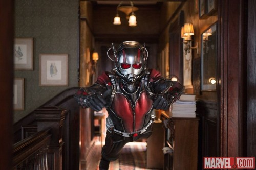 Paul Rudd runs with the insects in new photos from Marvel's 'Ant-Man'