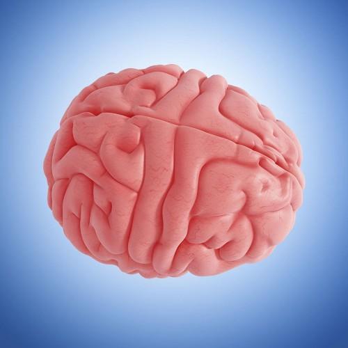 My aging brain makes me feel stupid - Los Angeles Times