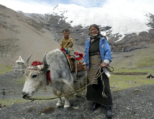 Tibetans get high-altitude edge from extinct Denisovans' genes - Los Angeles Times