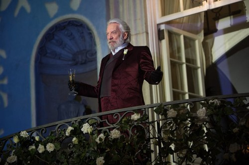 The malleable politics of 'Hunger Games: Catching Fire'