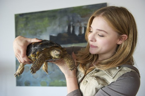 'Laggies' a lively break from the pressures of adulthood