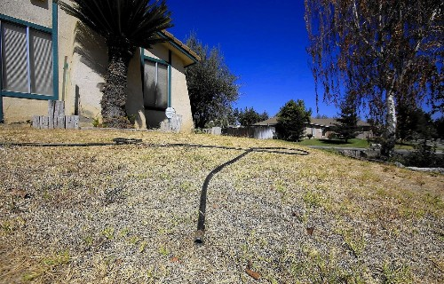 The 5 biggest misconceptions about watering your lawn and garden during a drought