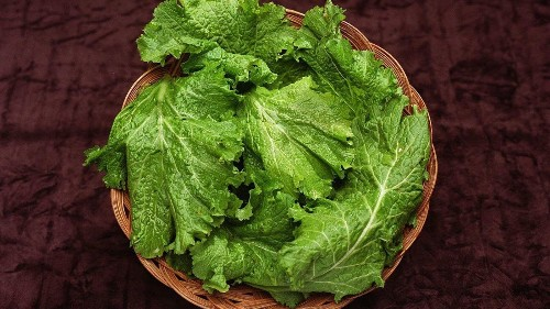 Kale and other leafy vegetables may make your brain seem 11 years younger