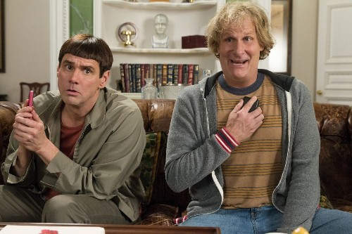 It's a no-brainer: 'Dumb and Dumber To' leads Friday box office