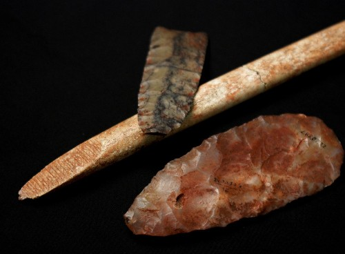 Native American origins: When the DNA points two ways