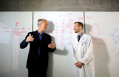 UCLA institute to help biologists, doctors mine 'big data'