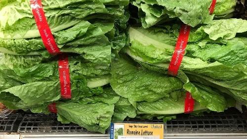 Romaine lettuce E. coli contamination claims more victims
