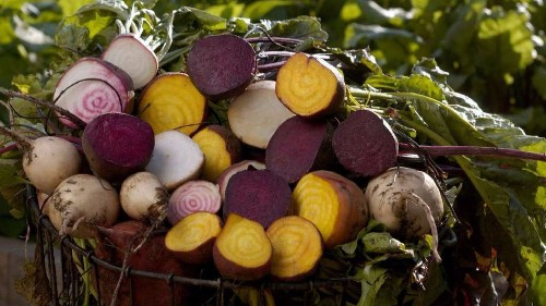 Farmers market report: Beets are in season. We have recipes