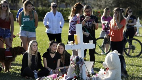 Yes, gun control. But here's another critical measure to keep us safe - Los Angeles Times