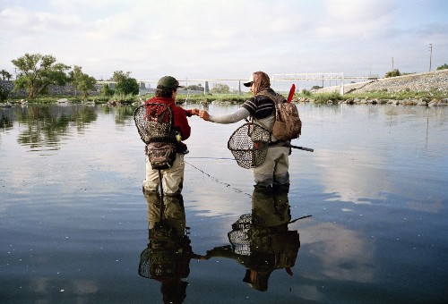 'Sewer salmon' and the secrets of the L.A. River