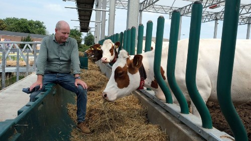 Dutch dairy tries to promote animal welfare and combat pollution with urban farming