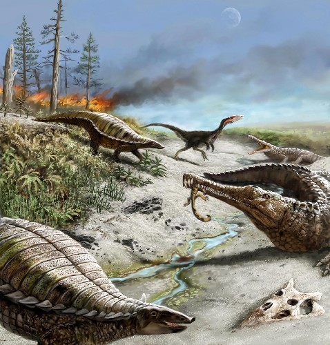 Mystery of the missing tropical dinosaurs, solved at last - Los Angeles Times