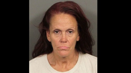 Woman accused of dumping puppies in trash bin had 38 dogs in her house, authorities say