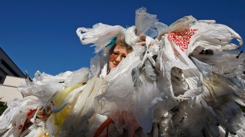 Will California's plastic bag ban do any good? - Los Angeles Times