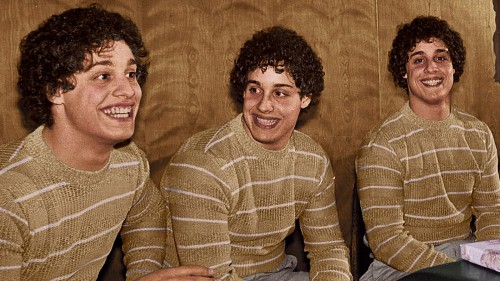 The surreal, sad story behind the acclaimed new doc 'Three Identical Strangers'