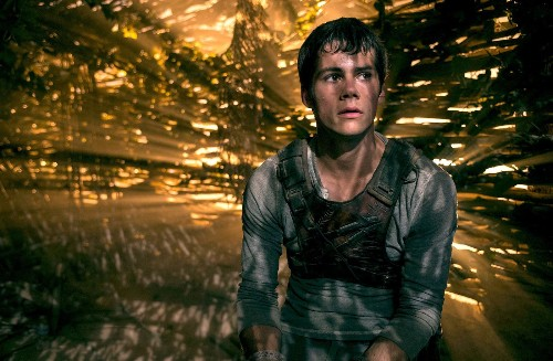 Lost in the dystopian nightmare of 'The Maze Runner'