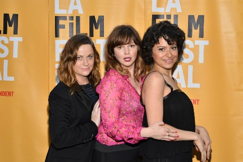 When Amy Poehler tells you to read a book, obey. That's how Amber Tamblyn found her L.A. Film Fest debut 'Paint It Black' - Los Angeles Times