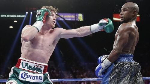 Canelo Alvarez's loss to Floyd Mayweather Jr. helped spur his rise