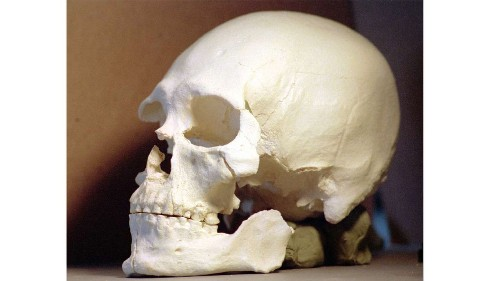 Kennewick Man's DNA reveals he was a Native American, study says