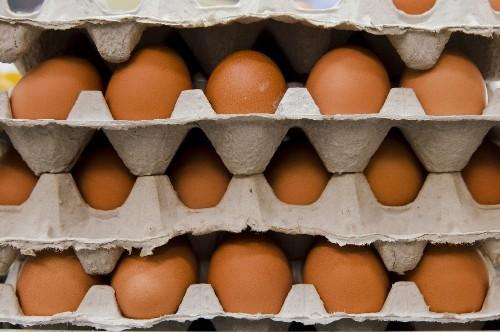 Perdue Farms eliminates antibiotic use in chicken hatcheries