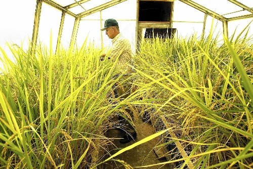Proposal reignites debate over labeling genetically modified foods - Los Angeles Times