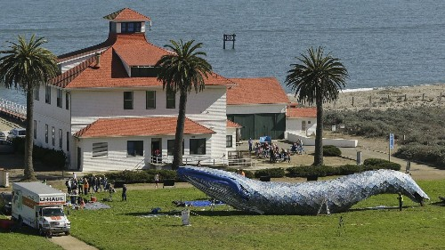 San Francisco's blue whale made from plastic trash carries a message about our oceans - Los Angeles Times