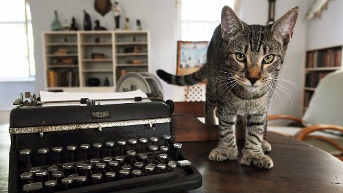 Hemingway's house and cats spared by Hurricane Irma