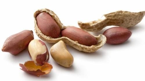 Dry-roasting process may turn harmless peanuts into allergy nightmares