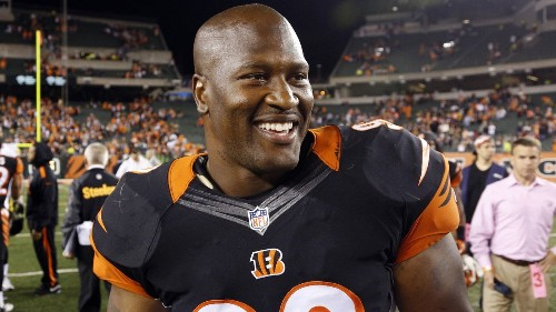 James Harrison, former Steelers star, announces his retirement
